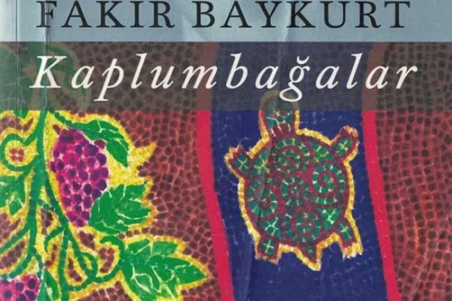 Kaplumbağalar - Bir Anadolu Romanı